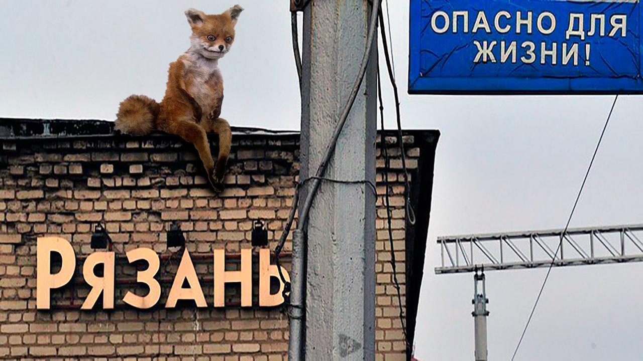 Татарстан вновь возглавил рейтинг инновационного развития регионов отВШЭ